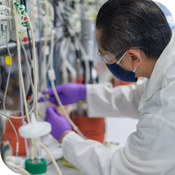 Why Bionova - Upstream Scientist at work